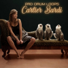 Cartier Bardi