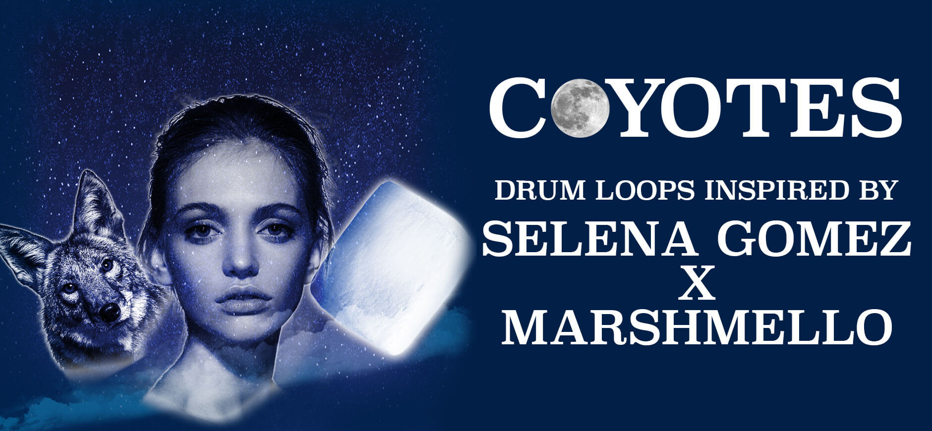 Wolves Drum Loops Inspired by Selena Gomez X Marshmello